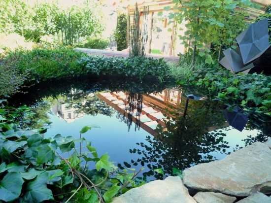 Reflection pond. ReSurgence