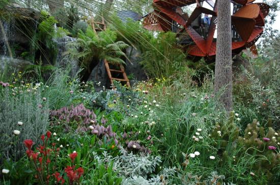 Wildflowers in the Australian Garden, winner of Best in Show, Chelsea 2013