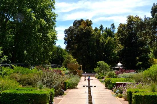 Adelaide Botanic Gardens Water Mediterranean Garden