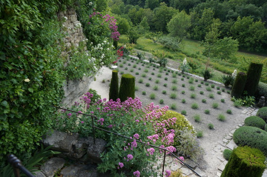 La Louve Provence