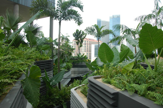 Roof garden Parkroyal on Pickering