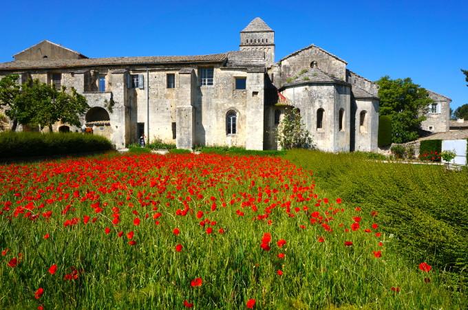 Poppies Saint-Paul Asylum, St Remy
