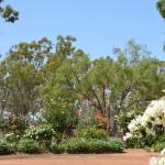 Gardens outback