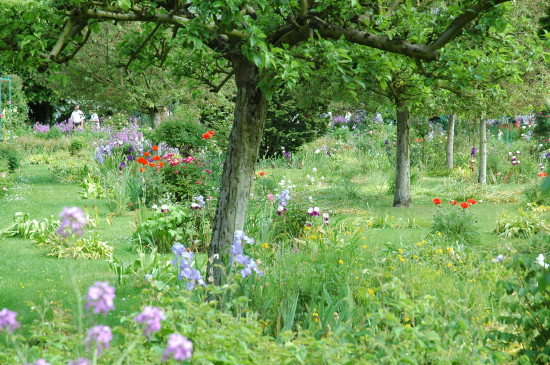 Giverny apple orchard