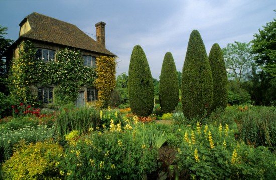 4 Yew pillars stand sentinel in the South garden as it is now with it's cheery orange and lemon colour scheme. Photo - Photolibrary