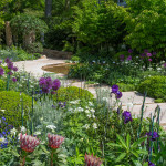 Awesome Aussies win at Chelsea Flower Show