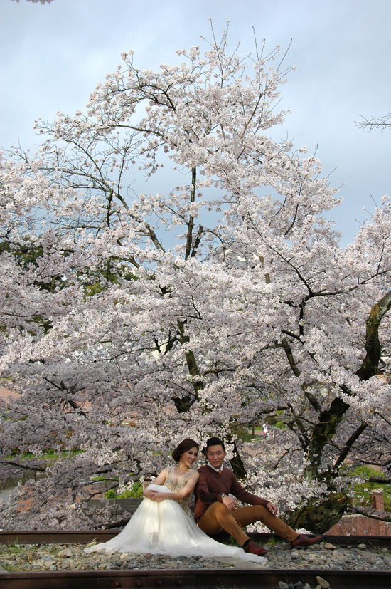 pic04-japan-cherries-kyoto-white-wedding_LR_0336-(2)