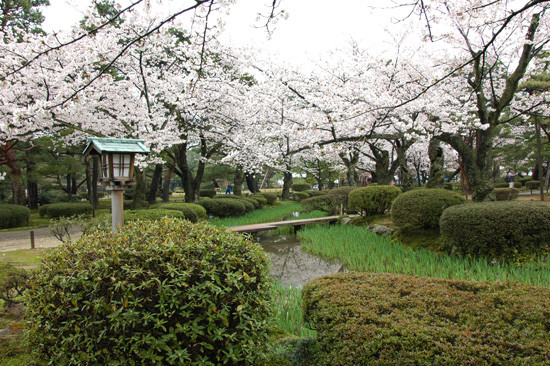 pic9-japan-Kenrokuen-cherry-bridge_LR_0115