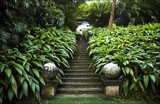 Run to paradise ross garden tours for Home garden design in sri lanka