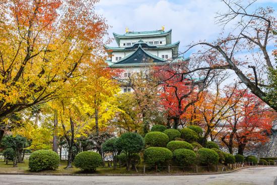 Nagoya Castle Garden. Photo: Cowardlion/shutterstock.com