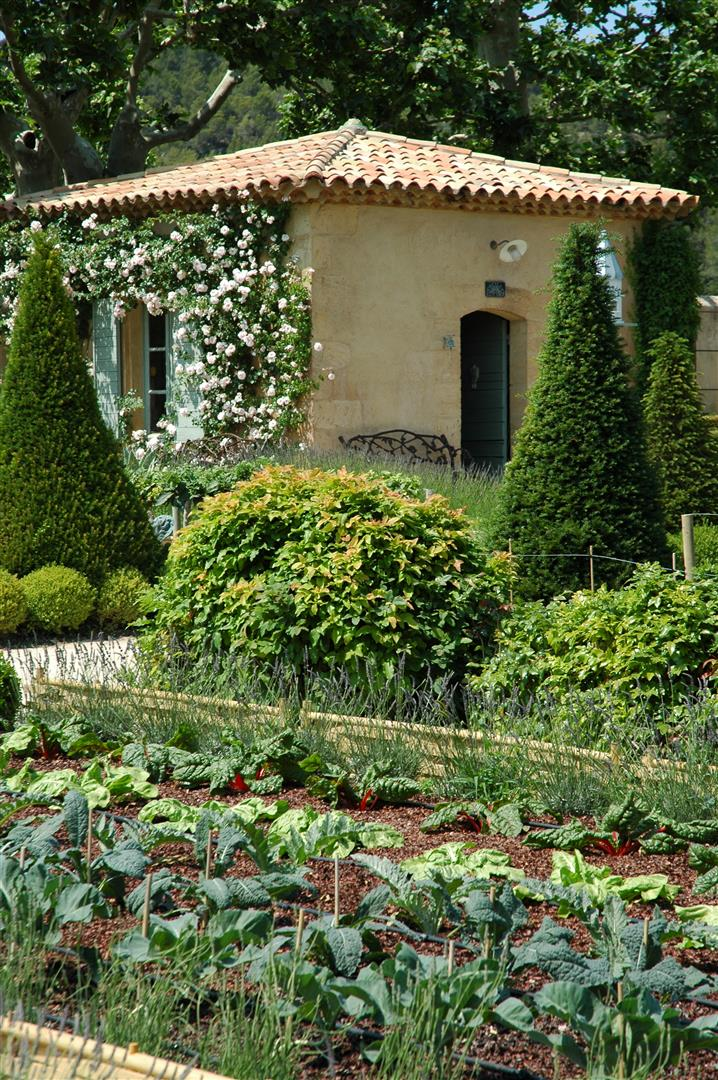 Postcard From Chateau Val Joanis Ross Garden Tours