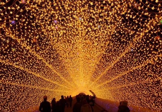 Tunnel of light. Photo -  Graham Ross