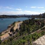 Barangaroo Reserve Debuts in Sydney