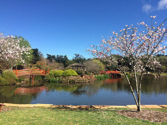 Japanese-Garden_web