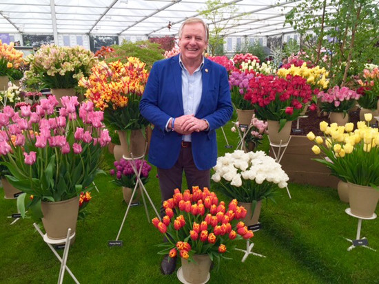 Graham enjoying tulips in the Grand Marquee