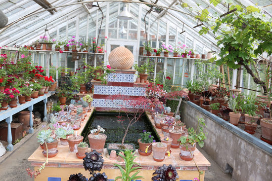 Inside the Bryan's Ground greenhouse. Photo - Colin Barlow