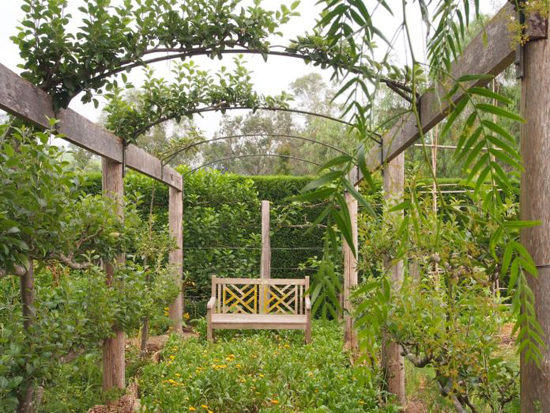 Pear arch in the kitchen garden. Photo - Robin Powell